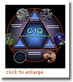 C-IQ [Collaborative Intelligence]