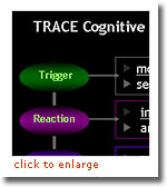 TRACE Cognitive Model and Knowledge Processor